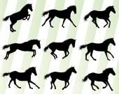 Fényképek Wild horse fast and strong winner set concept vector