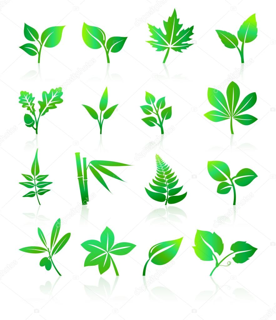 Green Leafs Icons