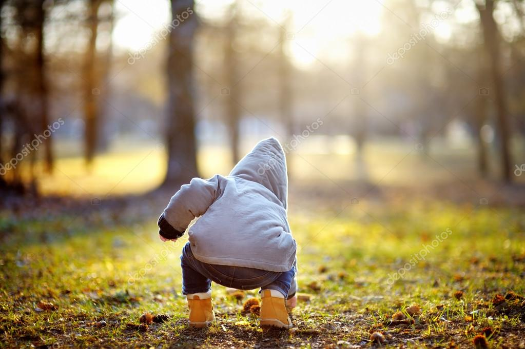 Toddler boy playing outdoors