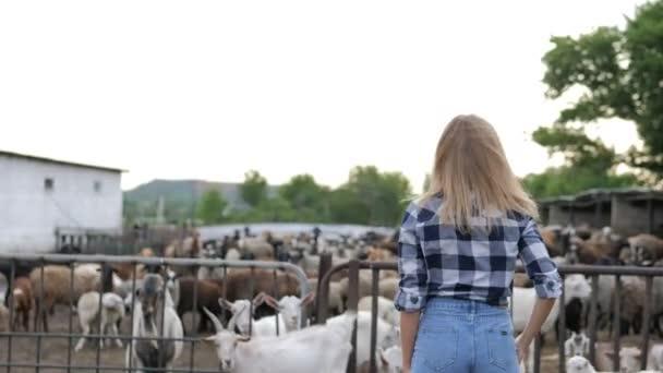 Roztomilé sexy dívka pózuje s bílou kozou na farmě