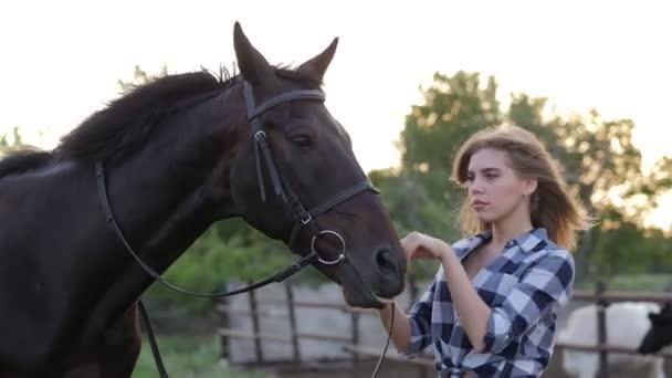 Holka s hourse. Usmívající se žena a její kůň na farmě