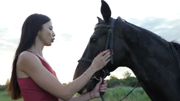 Beautiful girl in dress with hourse. Smiling woman and her horse on the farm