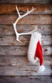 Fotografie Klobouk Santa na sobí paroh