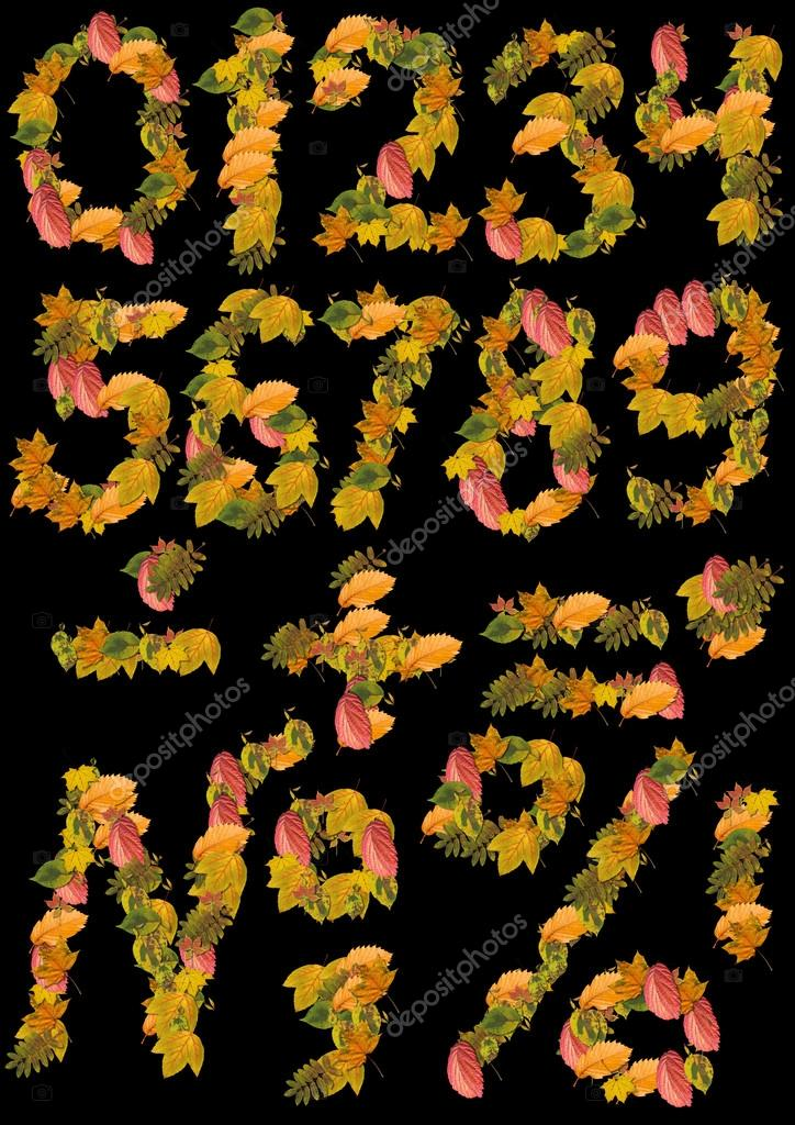 Numbers of autumn leaves on a black background