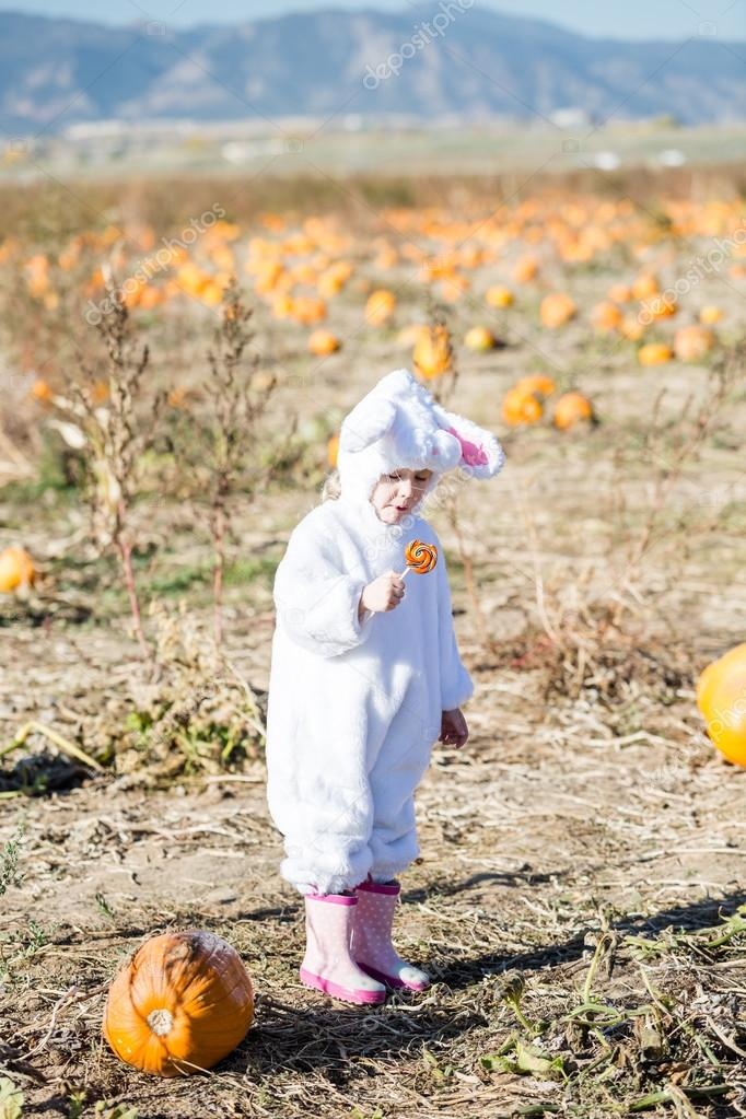 Cute kid in Halloween costume of a bunny