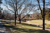 Parco suburbano americano
