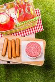 Fotografie Letní piknik s malými uhlí grilu a rožnění