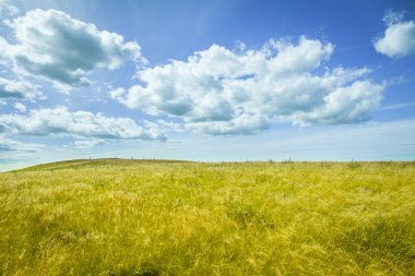 Beautiful prairie landscape with blue sky and clouds