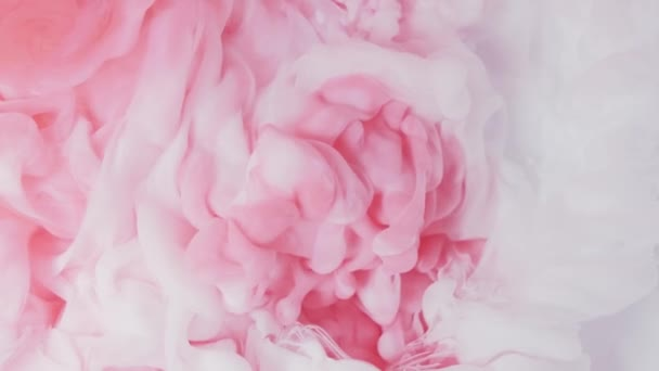 White and pink acrylic paint mixed in water . Slow motion