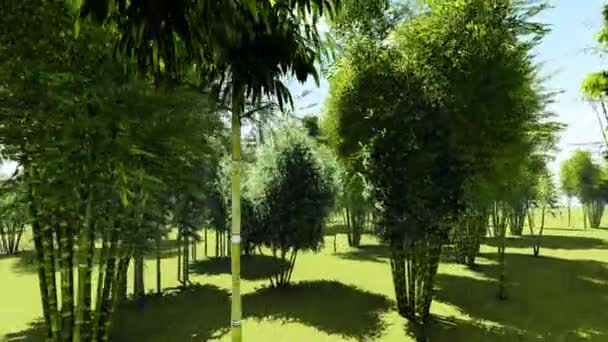 Bamboo forest animation