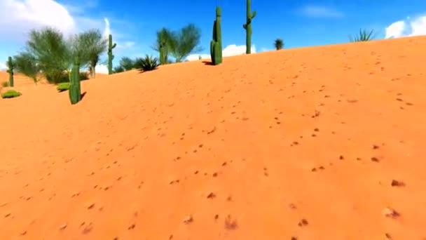 Americká poušť s kaktusy