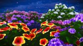 Letní květy na louce 3d vykreslování
