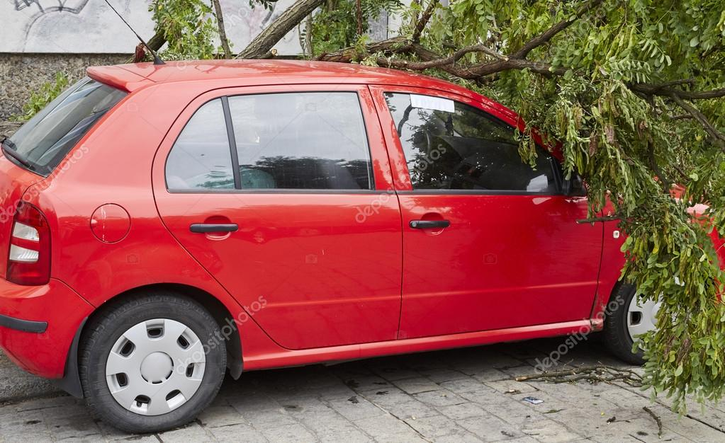 Car smashed by high winds