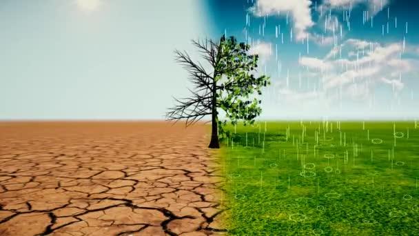 Az éghajlatváltozás okozta szélsőséges időjárás: több hőhullám, aszály