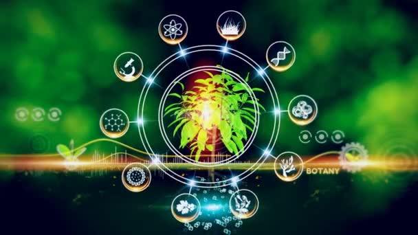 Botany Icon Concept Grüne Umgebung mit Center und Speichenkonzept, Pflanze in der Mitte und rotierende Symbole