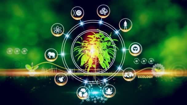 Ekologie Koncepce Zelené prostředí s centrem a mluvil Koncept, Rostlina na střed a rotující ikony
