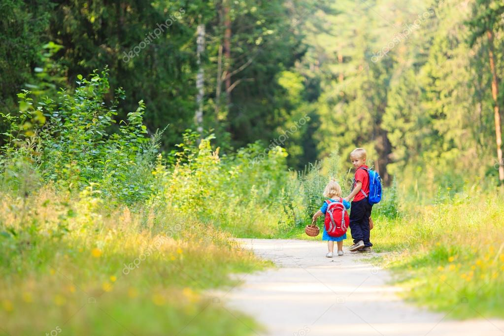 Kids pick mushrooms in green forest, kids outdoor activities stock vector
