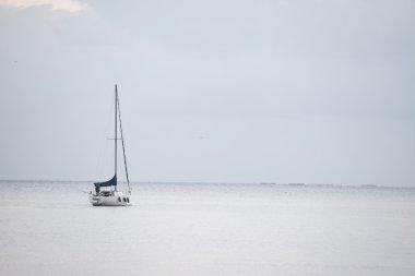 "Картина, постер, плакат, фотообои ""белый корабль в белом море "", артикул 110489058"