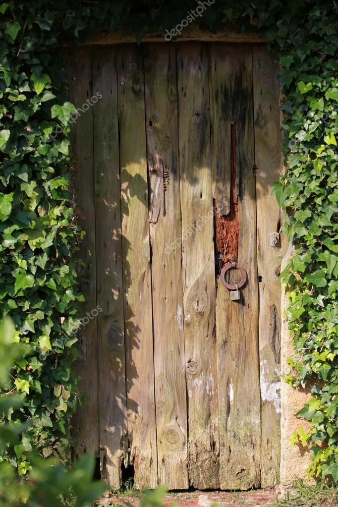 Alte Tür Im Garten Ist Geschlossen U2014 Stockfoto