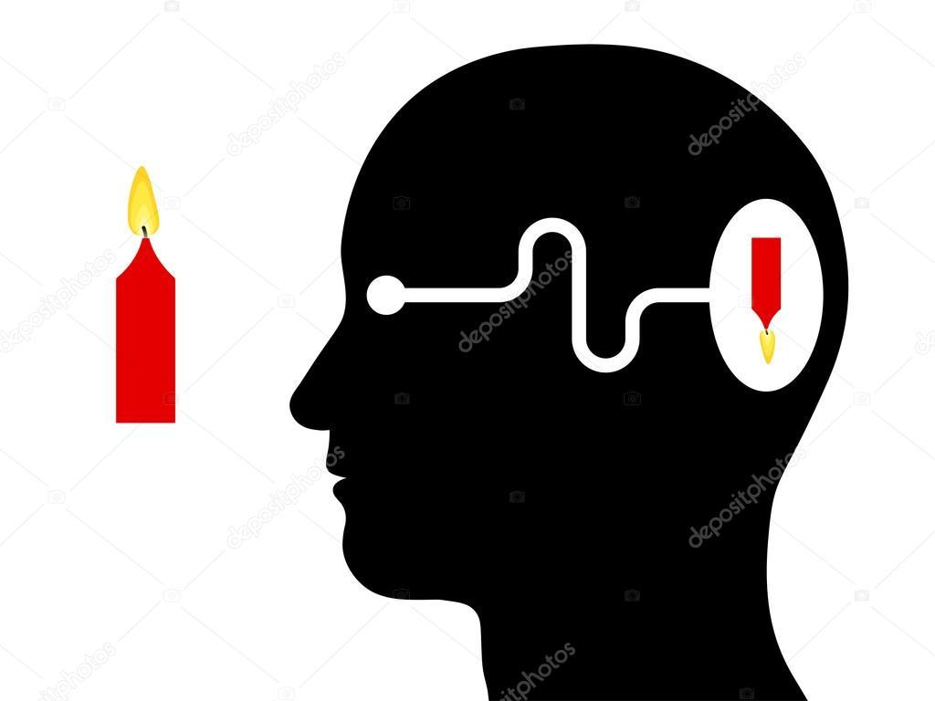 Diagrama que muestra la percepción visual en un ser humano — Archivo ...