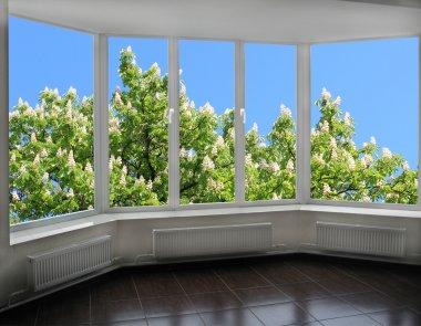 modern window overlooking the blooming chestnut tree