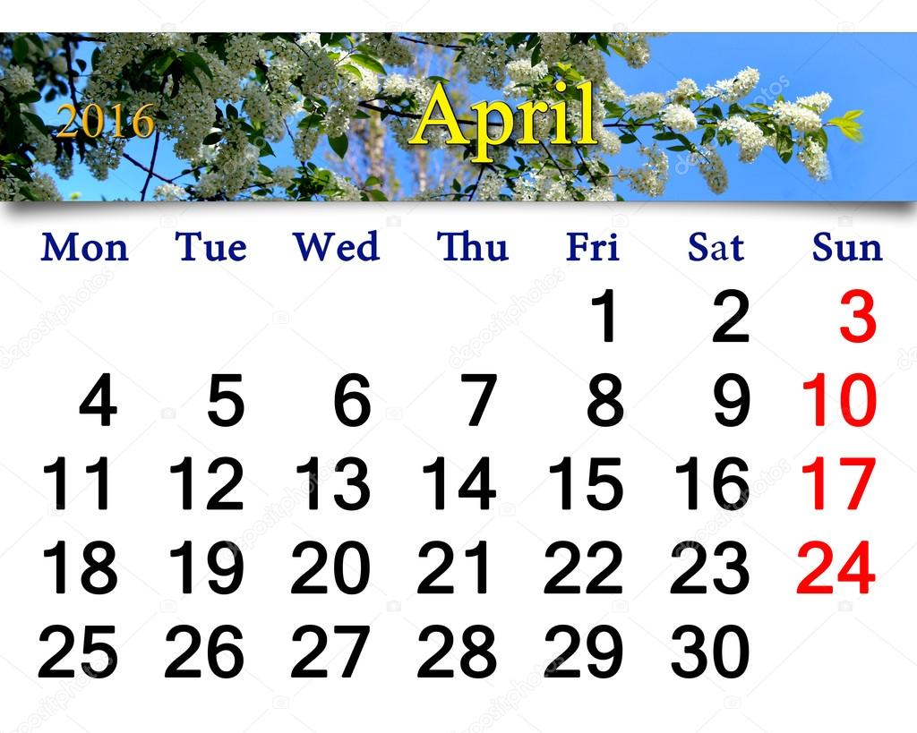 calendar for April 2016 with bird cherry tree