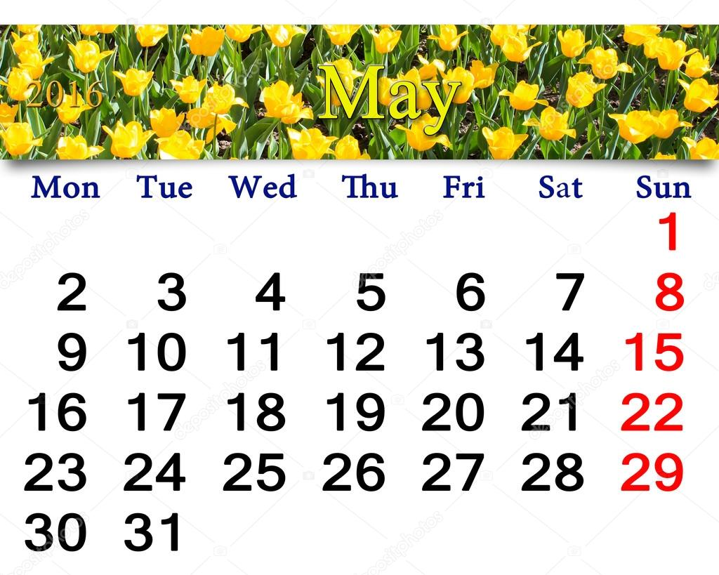 calendar for May 2016 with yellow tulips