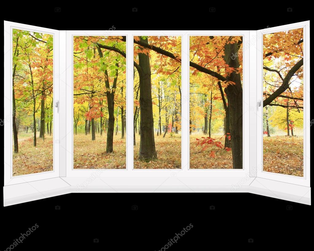 window overlooking the autumn park