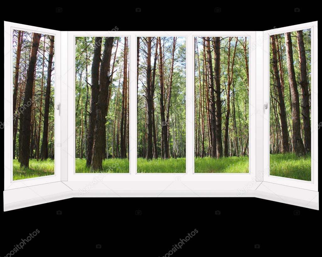 Finestre di plastica con vista bosco foto stock - Stock finestre pvc ...