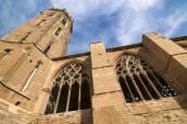 Lerida (Španělsko), gotická katedrála