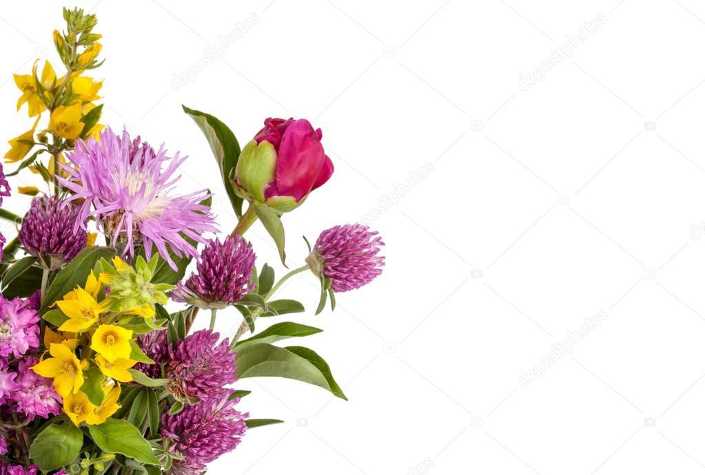 Красивый фон из цветов