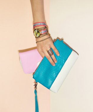 Stylish accessories. Jewelry and Clutches. Fashion choice.