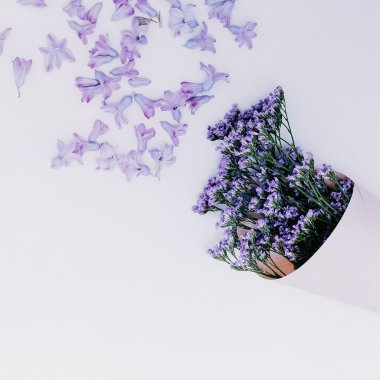 Purple flowers on white background. Aroma of Spring. Minimalism