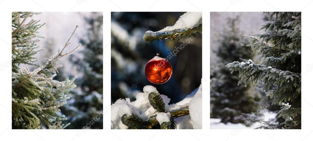 Triptych - Christmas Forest