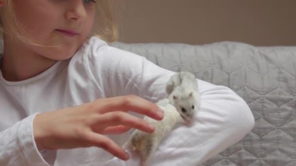 Kleines Mädchen mit Hamstern
