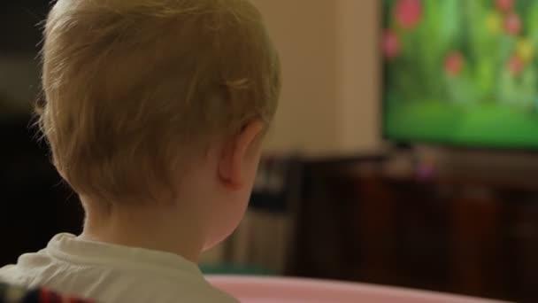 Little Boy Watching Cartoons