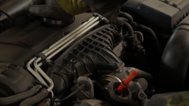 Auto motor služba