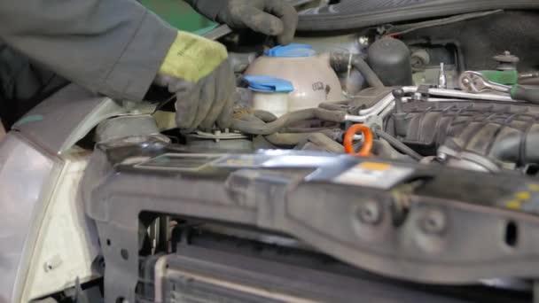 Mechanic Servicing the Car