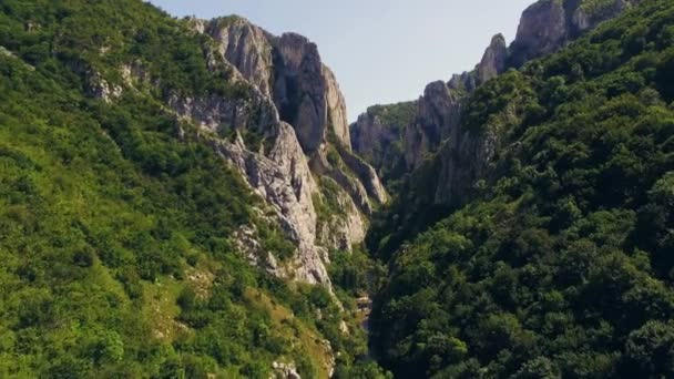 Stunning aerial view of mountainous region with cliffs and trees