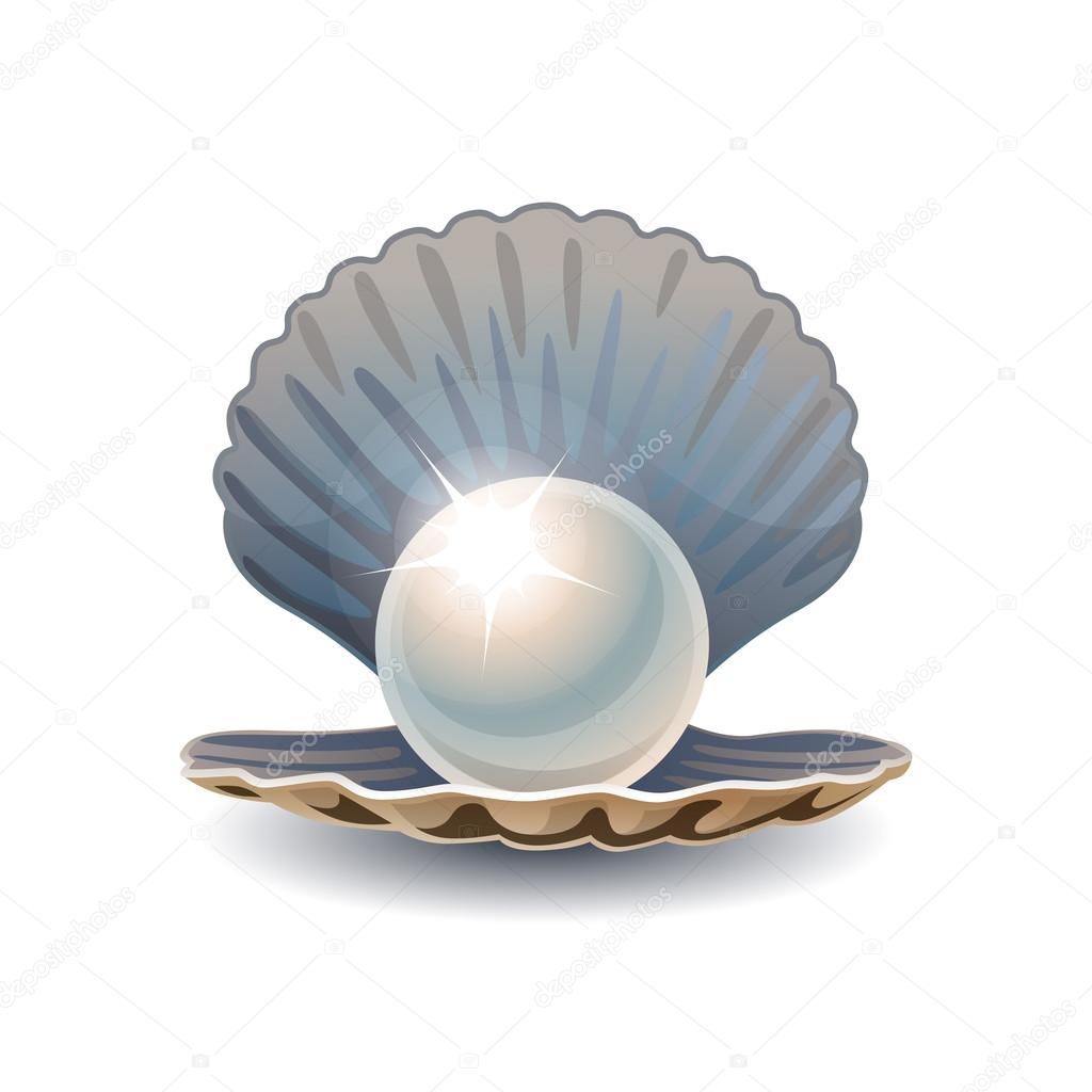 Pearl in opened seashell — Stock Vector © Mikado767 #59028025