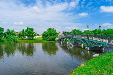 River and bridge in summer park