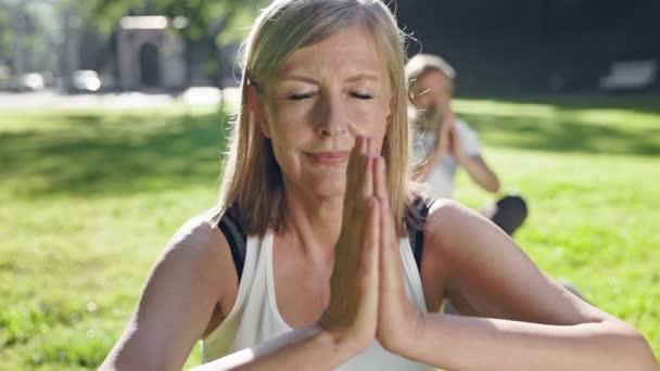 Starý muž a žena cvičí jógu v parku. Sedí na kobercích na zemi. Jejich oči jsou zavřené. Muž za ženou.