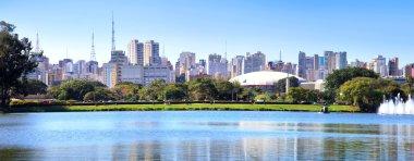 Sao Paulo panoramic view