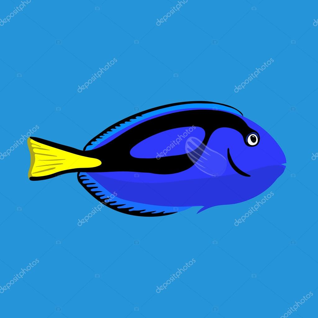 Tropical ocean surgeon fish, vector illustration