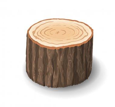 Cross section of tree stump, vector illustration