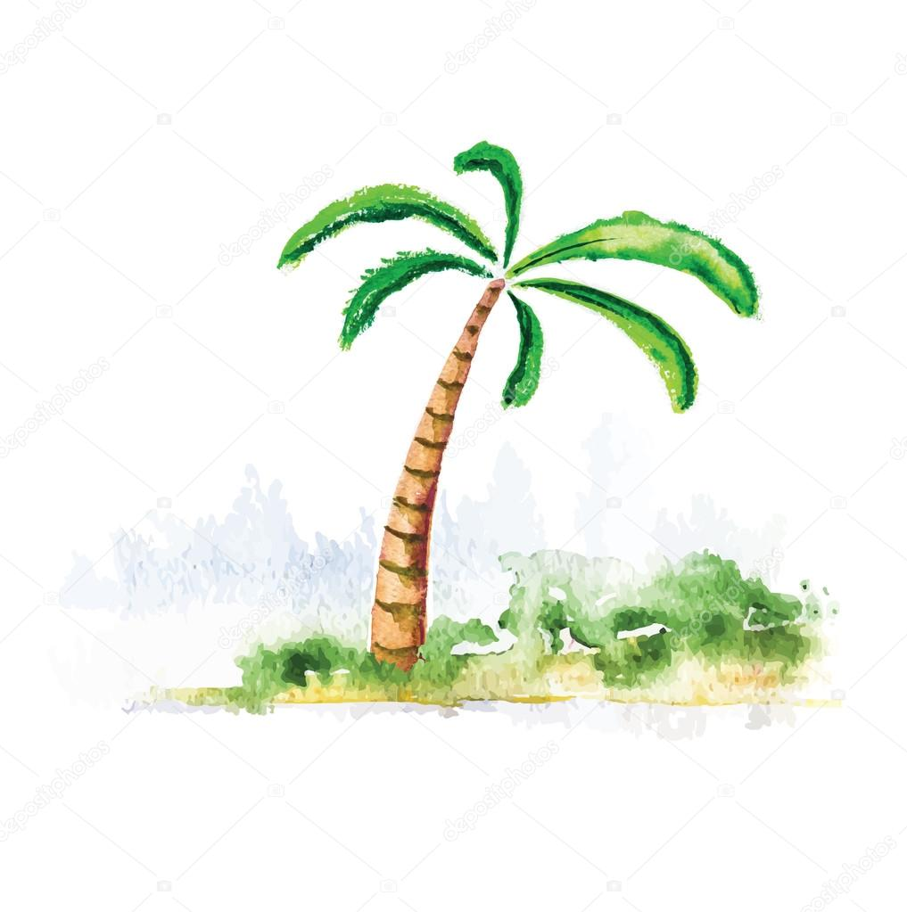 Palm tree, watercolour vector illustration