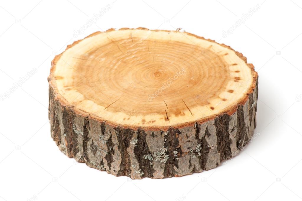 Coupe transversale de tronc d 39 arbre sur fond blanc - Coupe transversale d un tronc d arbre ...
