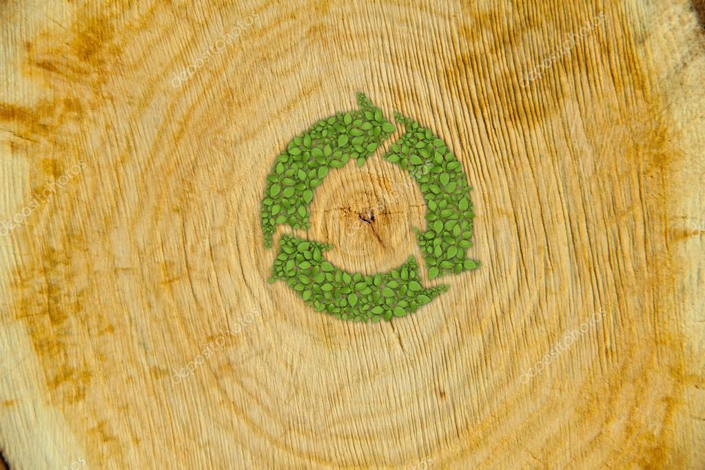 Cross section of tree trunk with green plant recycle symbol