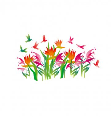 tropical exotic decorative flowers and color little birds. vecto