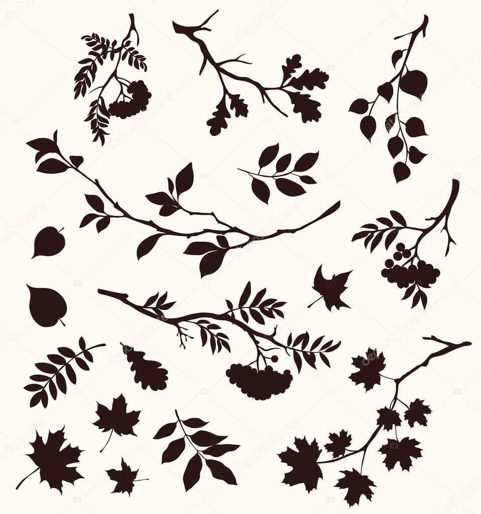 Conjunto otoño de ramitas y hojas — Vector de stock © Gizele #121784710